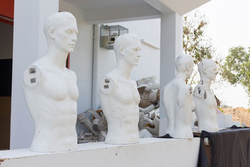 Realistic mannequin head and torso