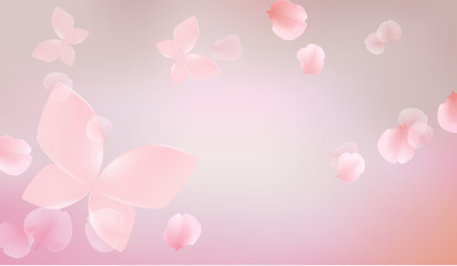 elegant soft pink color flowers with butterfly