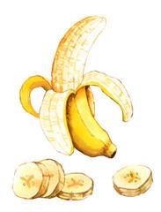 Hand drawn watercolor illustration of banana