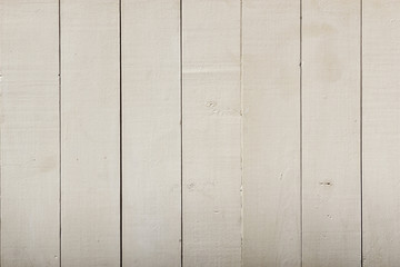 Wooden wall in summer
