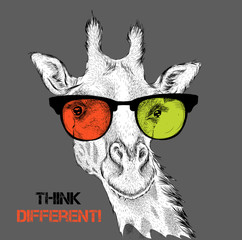 Portrait of the giraffe in the colored glasses. Think different. Vector illustration.