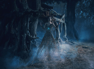 The spirit wanders the woods in the dark magic forest.girl tree took root near the mighty oak,mystical image, spells,fashion creative color toning