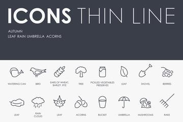 autumn Thin Line Icons