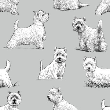 scottish terrier pattern