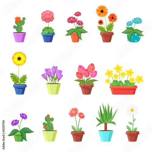 Wall mural Cute spring flowers in pots vector. Flower spring, flower pot, floral plant, nature flower blossom, chamomile tulip sunflower illustration