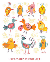 Funny bird vector set. Cartoon collection.