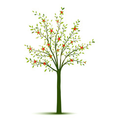 Spring tree with leaves and flowers