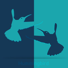 Hummingbird icon Vector illustration