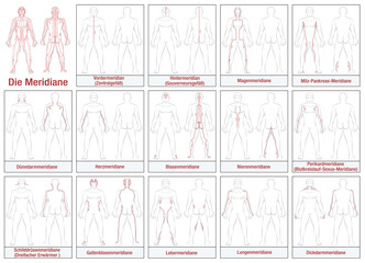 Body meridians - GERMAN LABELING - Schematic diagram with main acupuncture meridians and their directions of flow. Isolated vector illustration on white background.