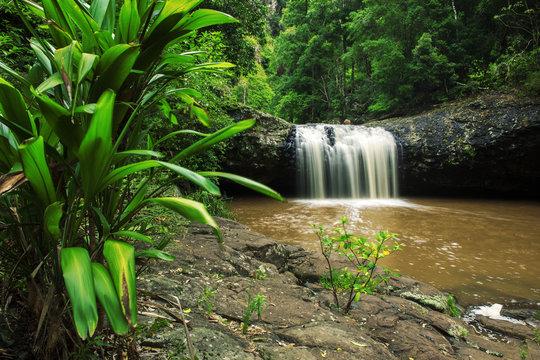 Lip falls in Beechmont, Queensland, Australia. Located in the Denham Reserve.