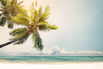 Landscape vintage nature background of coconut palm tree on tropical beach coast with sunlight in summer, retro effect filter