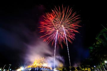 blur fireworks festival  in the night sky