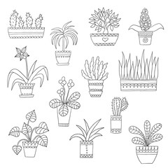 Cute hand drawn vector flowers in the pots.