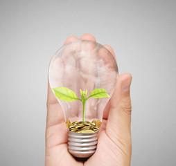 Energy saving light bulb, Creative light bulb idea in hand