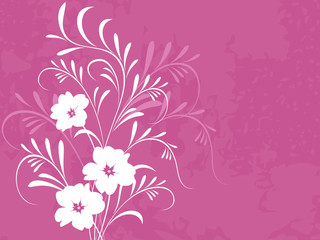 Flowers and ornaments, floral background