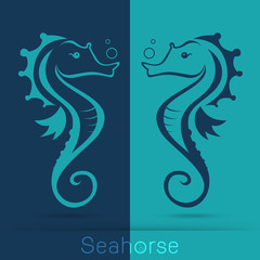Twin seahorse with sponge, monochromatic