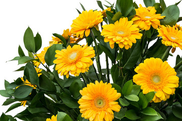 Large bouquet of yellow gerberas