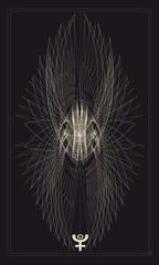 Tarot cards - back design.   Pluto, phoenix