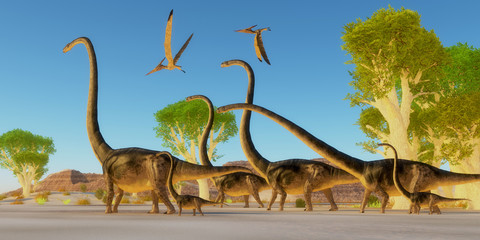 Jurassic Omeisaurus Forest - Two Pteranodon reptile birds fly over a herd of Omeisaurus dinosaurs traveling through a Jurassic forest.