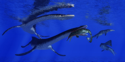 Plesiosaurus Attacks Metriorhynchus - A Metriorhynchus becomes a meal for a Plesiosaurus marine reptile in blue Jurassic seas.