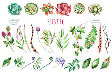Colorful floral collection with artichoke,flowers,leaves,feathers,succulent plant,branches,raspberry,lotus and more,Colorful floral collection with 27 watercolor elements.Set of floral elements