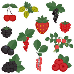 Set of juicy berries.