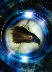 eagle in cosmic space and light circle. original painting collage. Mirror on the planet Earth. Animal concept, Profile portrait. Winter effect and blue color.