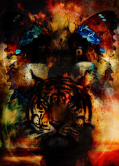 tiger and butterfly. Painting collage and desert crackle.