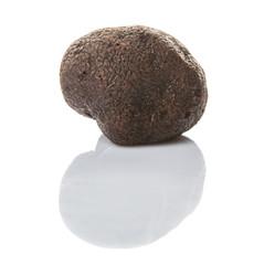 Black truffle mushroom over white background