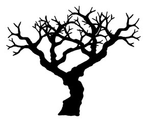 Tree vector isolated on white background.