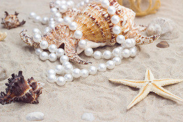 shell with pearls on a sandy beach