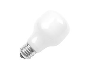 Matte  electric incandescent lamp