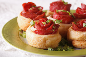 Beautiful food: roll with salami and cheese close-up. horizontal