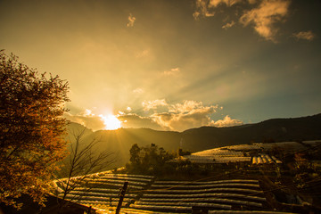 Sunset view in Chiangmai province of Thailand