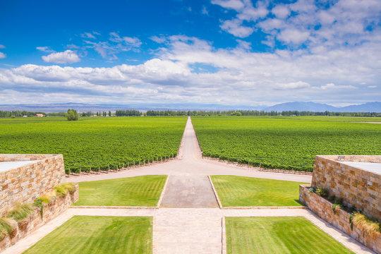 Winery in Mendoza, Argentina