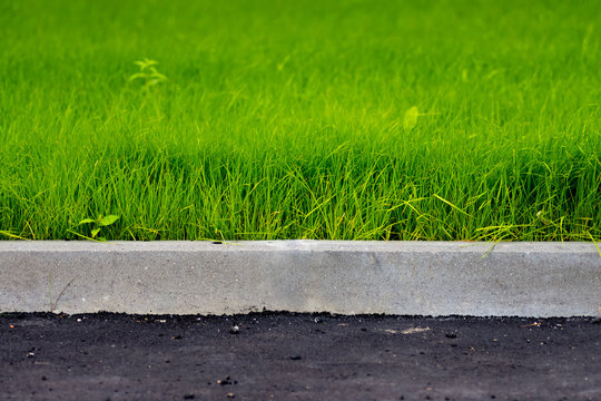 green grass, black asphalt and gray curbstone.  Improvement of the city.