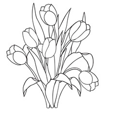Tulips , flowers, ornamental black and white coloring pages.