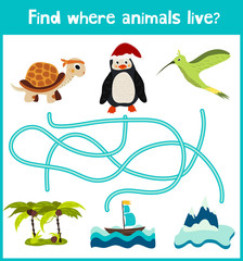 Fun and colorful puzzle game for children's development find where a penguin, a turtle, and Hummingbird. Training mazes for preschoolers. Vector
