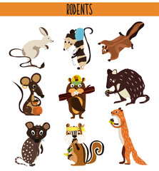 Cartoon Set of Cute Animals rodents living on the planet .Squirrel, mouse, opossum, Coney, beaver, Chipmunk, quoll, quokka . Vector