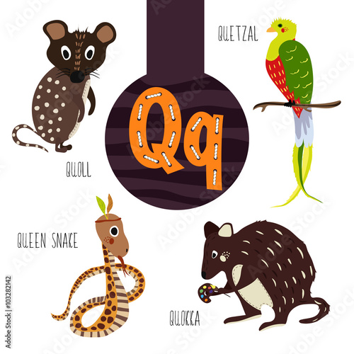 Fun animal letters of the alphabet for the development and