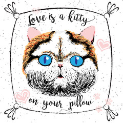 Deurstickers Hand getrokken schets van dieren Love is a kitty on your pillow, love quote about pets. Vector outstanding lettering, calligraphy, motivational typography post card. Cute, friendly, smiling, inspirational cat with hearts and sparkle.