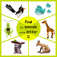 Funny learning maze game, find all 3 cute wild animals with the letter G, tropical gorilla, giraffe from Savannah and grasshopper insect. Educational page for children. Vector