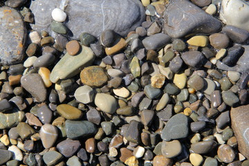 Pebble of the sea, year 2015