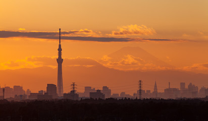 Tokyo city view with mt.fuji before sunset time