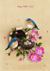 Beautiful Vintage Greeting Mothers Day card with Nest with two blue birds
