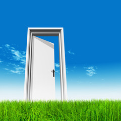 Conceptual white door in grass with sky background