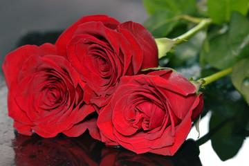 Three roses on black