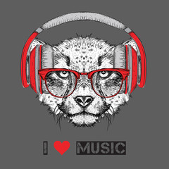 The image of the cheetah in the glasses and headphones. Vector illustration.
