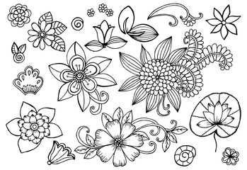 Set of doodle floral design elements in black and white