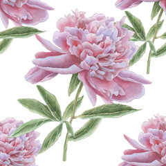 Seamless pattern with gorgeous pink peony.